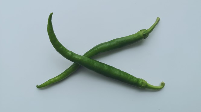 Kıl Peppers